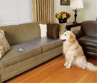 Trainingsmat houdt uw hond van de bank. ook als je niet thuis bent.  Van € 109,95 voor € 59,95