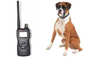 Trainingshalsband voor grote honden – 1000 meter – OHS 59
