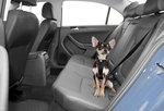Tru-Fit Smart veiligheids Harnas voor in de auto