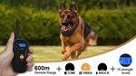 Trainingsband type OHS 620 voor 2 honden 600m