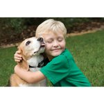 Anti blafband Petsafe 6017 kleine hond vanaf 3,6kg