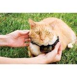 extra ontvanger omheining petsafe voor katten_