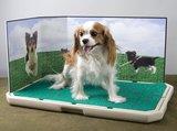 Petsafe Piddle Place hondentoilet voor kleine hond_