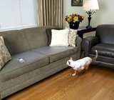 Trainingsmat 43*122 cm, houdt uw hond van de bank ook als u niet thuis bent.