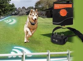 Onzichtbare omheining hond – 300 meter- oplaadbaar - spatwatervast– OHS 16