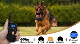 Trainingsband type OHS 620 voor (kleine tot grote) hond 600 meter, zwemwatervast, 16 levels instelbaar voor schok, trillen en geluid.