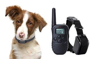 Oplaadbare trainingshalsband voor 2 honden – 300 meter - OHS 38