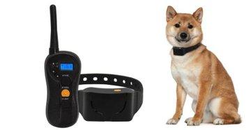 Trainingsband type OHS630 voor 2 (kleine tot middelgrote) honden 600 meter, watervast, 16 levels instelbaar voor trillen en geluid.
