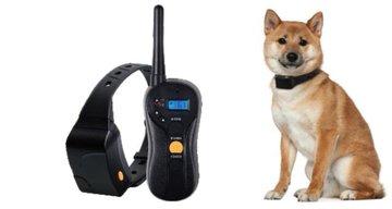 Trainingsband type OHS620 voor 2 (kleine tot middelgrote) honden 600 meter, ZWEMwatervast, 16 levels instelbaar voor schok, trillen en geluid.