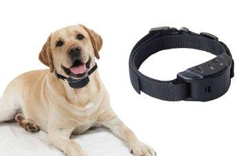 Anti blafband hond met stroom en geluid - OHS 58