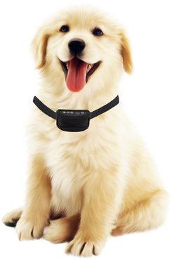 Anti blafband hond oplaadbaar spatwaterdicht   met trillen en geluid - OHS 66