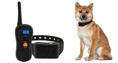 Trainingsband (tril) OHS 630 voor 2 honden 600m