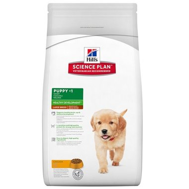 Hill's canine puppy health development large kip 2,5kg