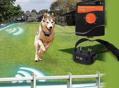 Onzichtbare omheining hond –300M- oplaadbaar