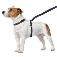 Thunderleash Anti Trek hondenriem